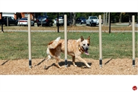 Picture of Bark Park Weave Posts, Outdoor Dog Exercise