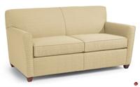 Picture of Flexsteel Healthcare Coronado Lounge Reception Sleeper Sofa